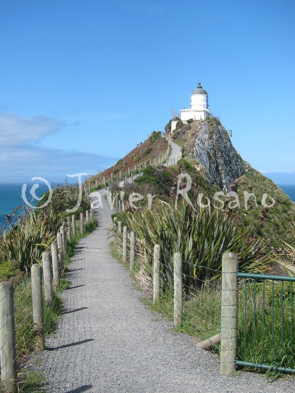 Nugget Point Lighthouse. Canon S95. 11 mm, f/6.3, 1/800 s, ISO 200.