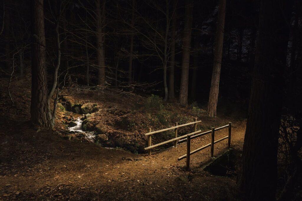 El puente. Fotografía nocturna